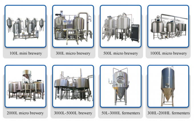 100L Small Microbrewery Beer Brewing Fermenter SS304 Stainless Steel Brewing Systems